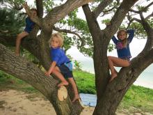 19 Grandchildren - Effie, Enzio and Emilia