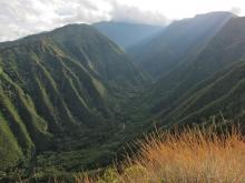 Iao Valley from Waihee Ridge Trail
